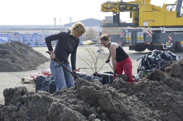 Stichting BRAAK! Aanleg Belcrum Beach, Breda